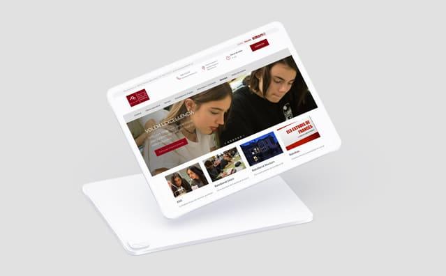 Institut Lluís de Peguera - Web Responsive